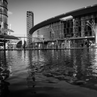 Milano Street Photo - Parco torre unicredit