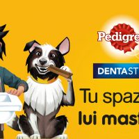 Dentastix Pedigree